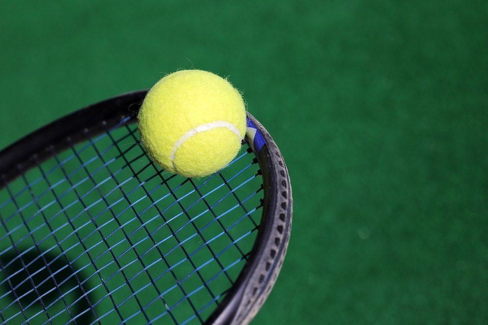 ATP Rotterdam 2020, Sinner ai quarti